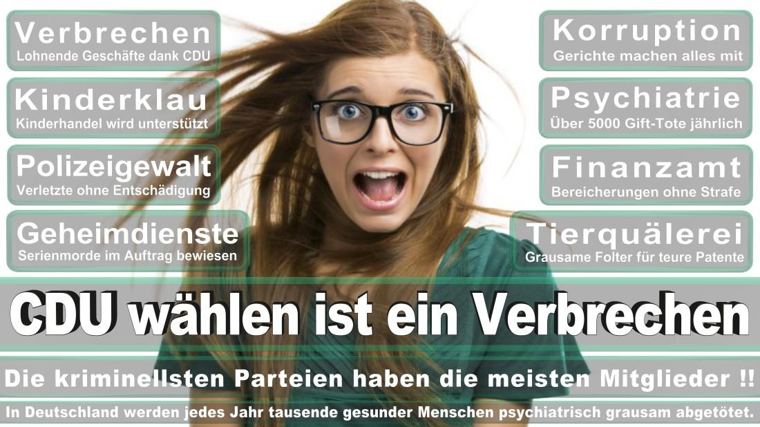 Willms Heyng, Sönke PR Berater Delbrück Von Gahlen Straße Freie Demokratische Partei (FDP) Düsseldorf