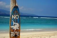 Videonauts Bali Gili island Strand beach backpacking