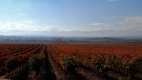 Videonauts Camino Jakobsweg Rioja