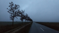 November_Camino25