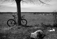 Videonauts Tegernsee fixed Radtour