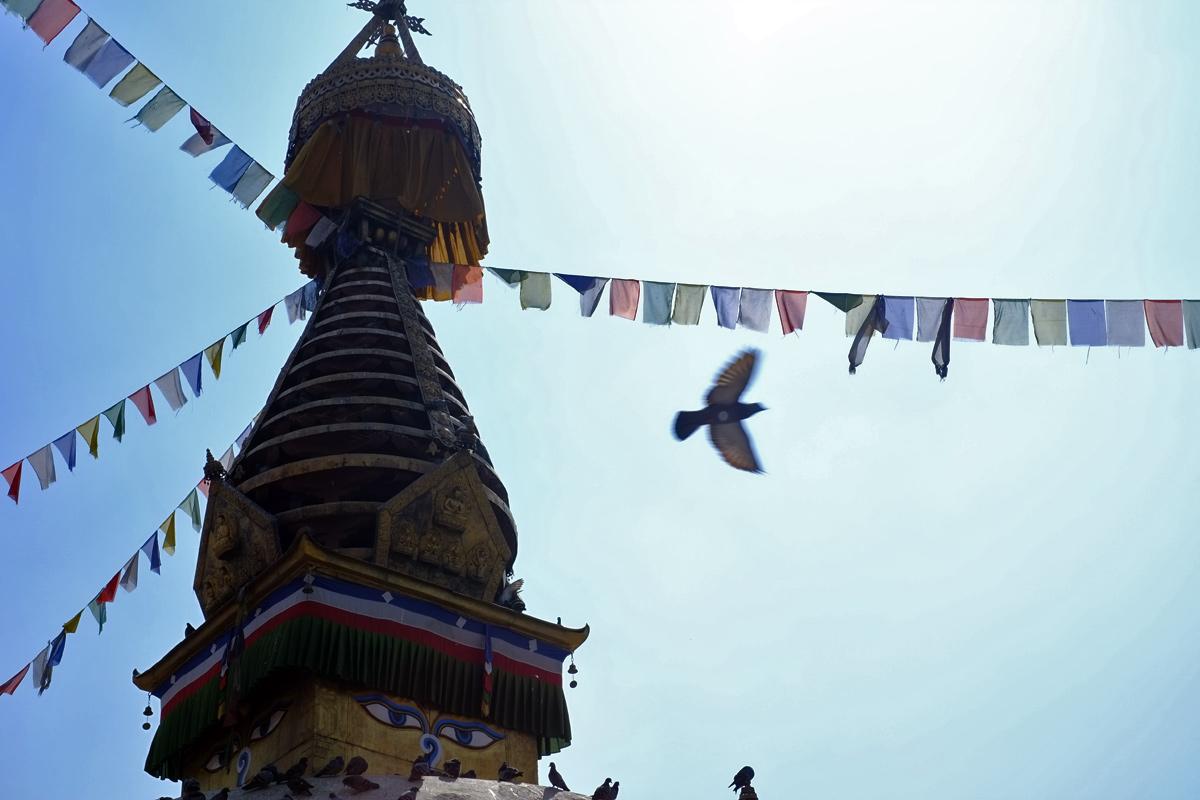 Videonauts Kathmandu Stupa