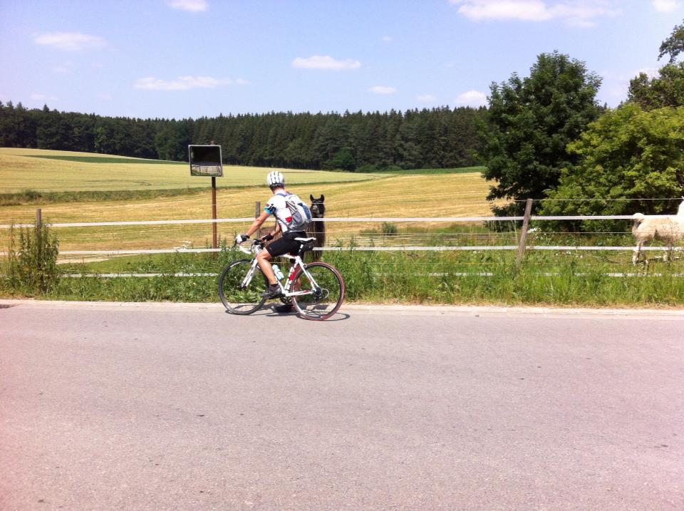 Videonauts Augsburg Radtour Lama