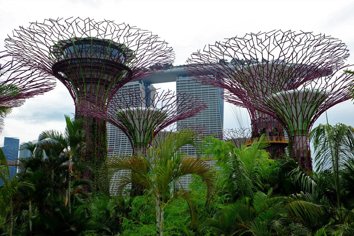 Videonauts Singapur gardens by the bay
