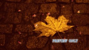 Fall Leaves Worship Video Motion