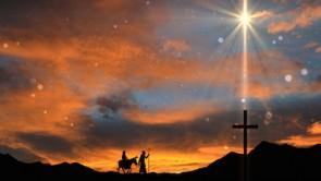born to die christmas