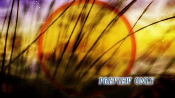 Tall Grass: Fall Worship Video