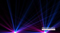 Colorful Light Flares Motion Loop