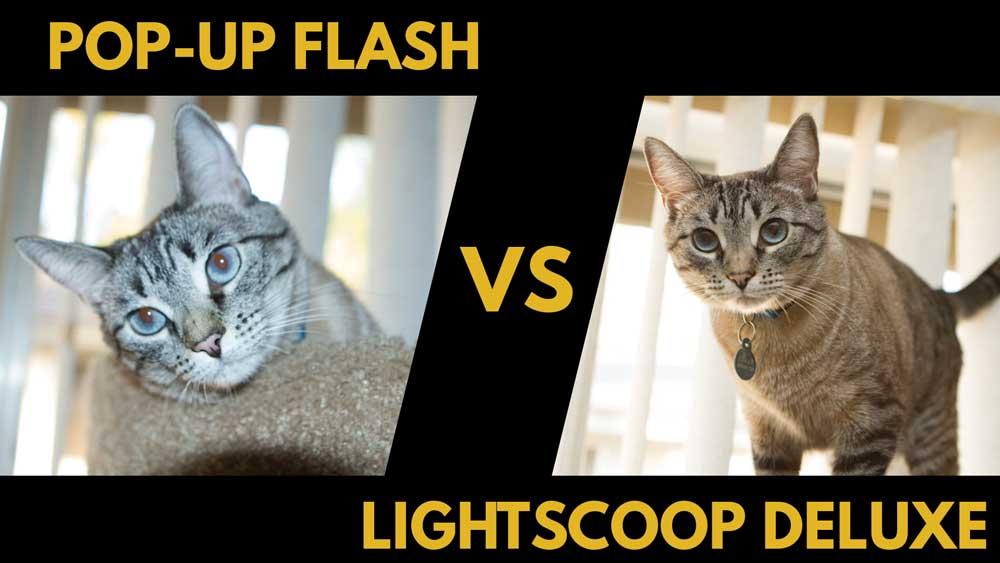 cat-lightscoop-deluxe