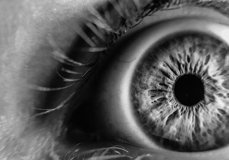 4 primes vs zoom lenses eye