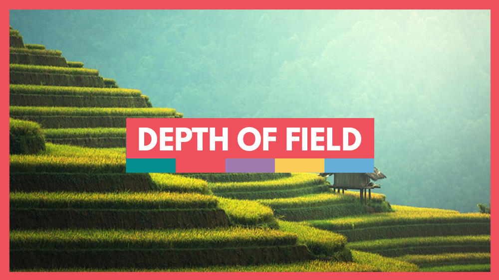 understanding depth of field