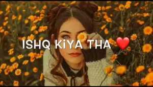 Ishq kiya tha humne bhi New shayari Whatsapp status video