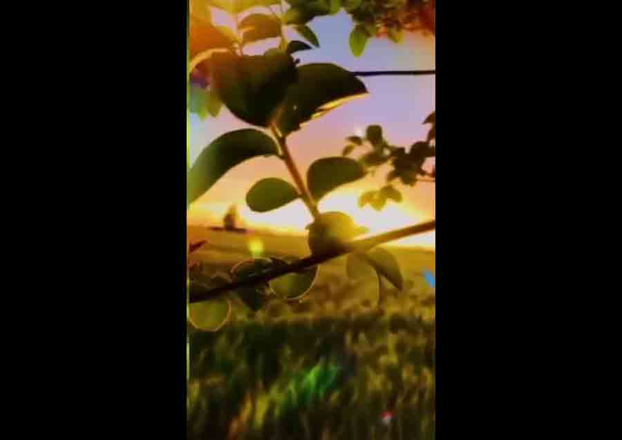 Natural Beauty 15 Sec Whatsapp Status Full Screen Whatsapp Status
