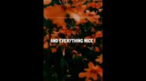 Read more about the article Lenka Everything At Once English Whatsapp Status Download
