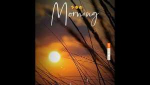Read more about the article Good Morning Status Morning Whatsapp Status