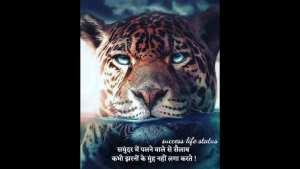 Read more about the article समुन्दर मैं पलने वाले Quotes In Hindi