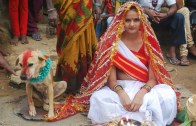 Woman Marries Dog In Traditional Ceremony In India