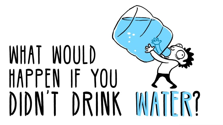 What Would Happen If You Don't Drink Water?