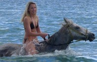 A Horse Who Takes Girls To Swim In The Water