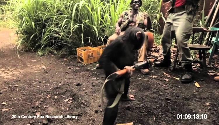 An Ape With A Gun