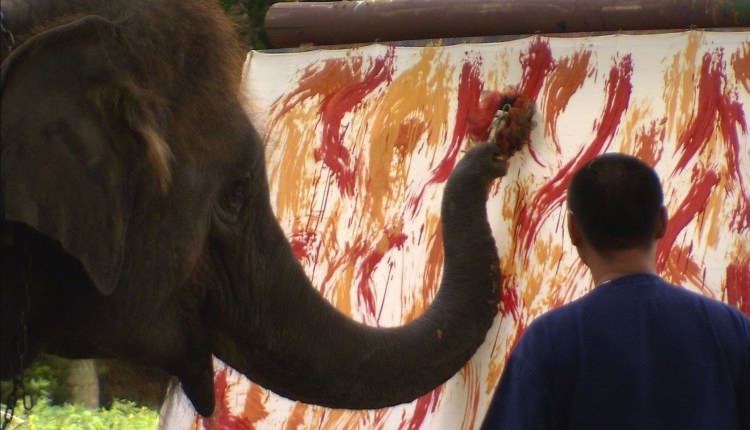 Awesome Extraordinary Elephant Artist