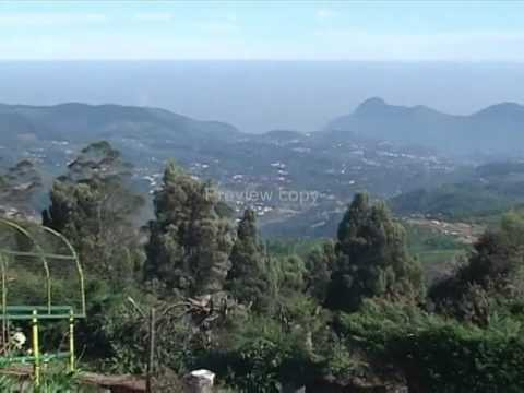Ooty Hill Station, Tamilnadu Travel Guide
