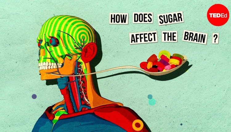 This Is How Sugar Affects Our Brain