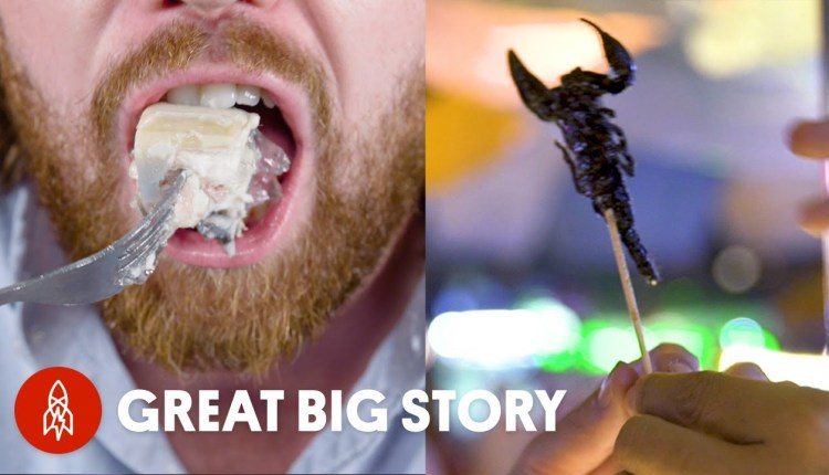 The Most Shocking Craziest Dishes In The World