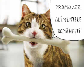 https://i0.wp.com/www.vidu.ro/aiumor/pisica-mananca-ciolan.jpg