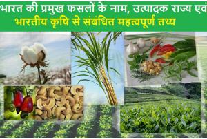 भारत की प्रमुख फसलों के नाम, उत्पादक राज्य