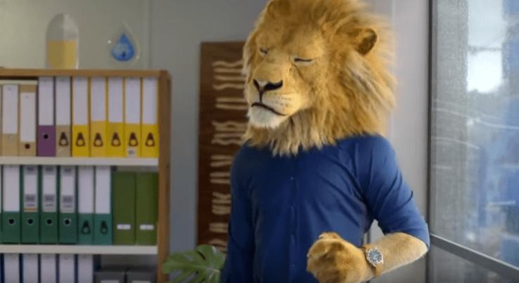 Slack office animal video