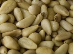 pine nuts in hindi