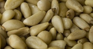 pine nuts in hindi