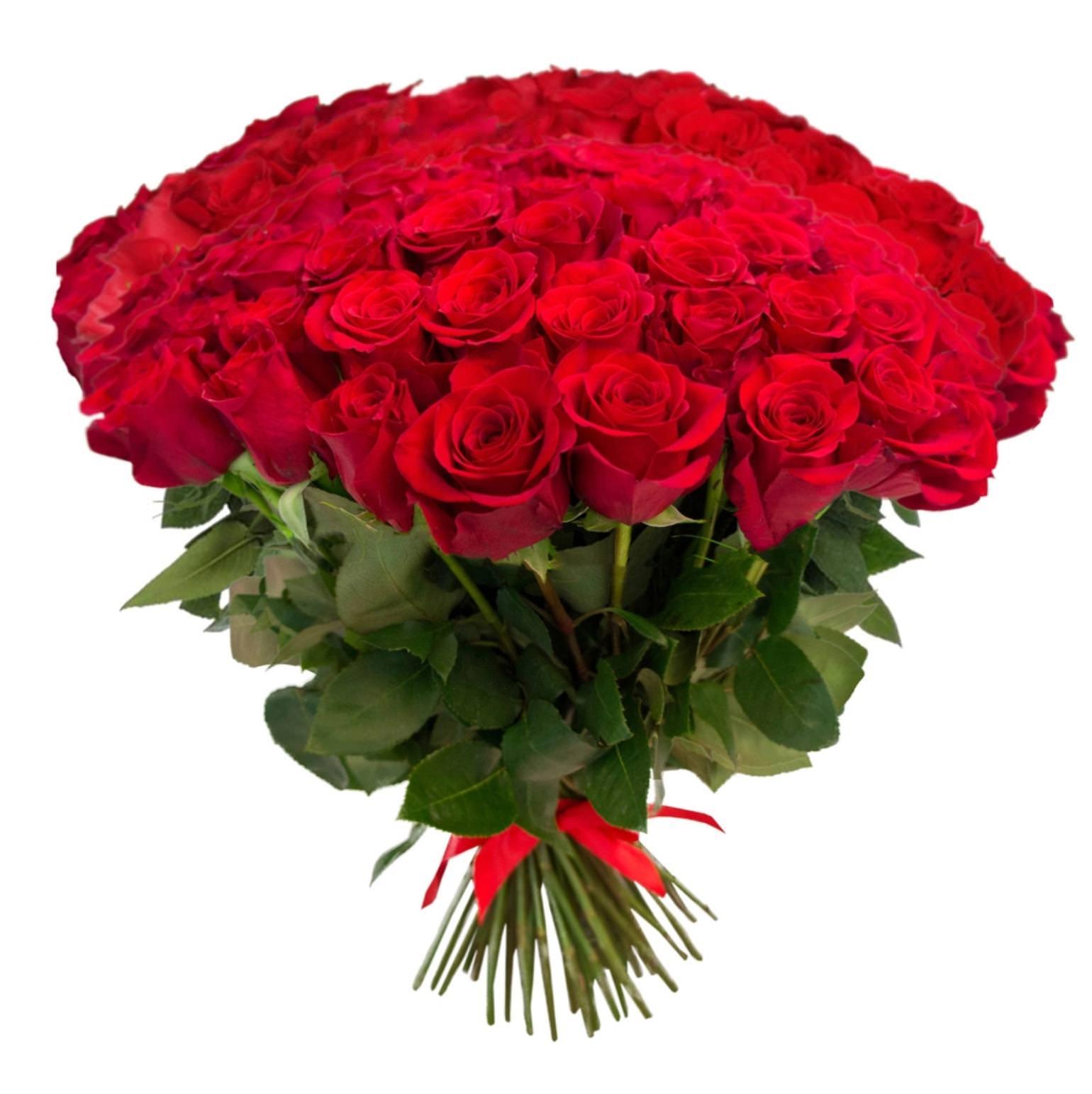 Rote Rosen  Vie De Flamme
