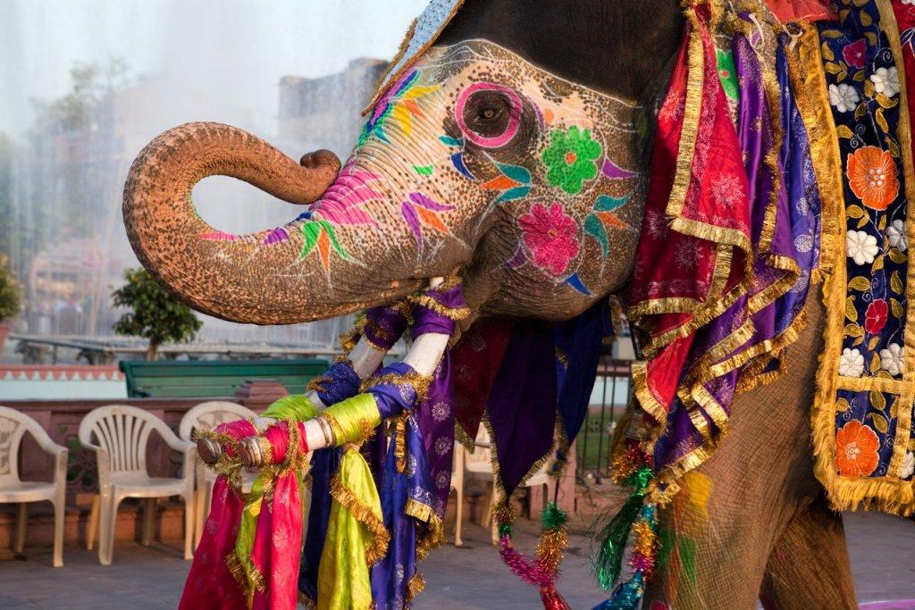 Klassisches Indien: Jaipur verzierter Elefant