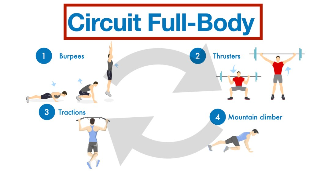 Image Circuit-Full-Body
