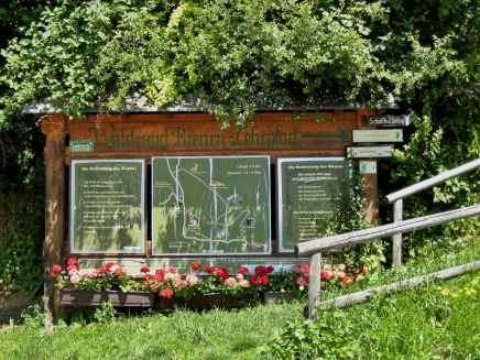Wald- und Bienenlehrpfad Passail