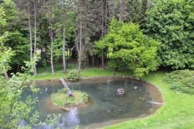 Hauseigener Teich - Blick vom Wellnessbereich