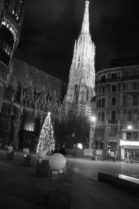 Tree and Stephansdom