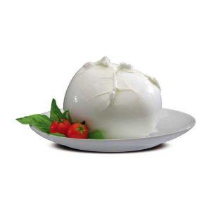 mozzarella di bufala biologica da 200 gr in buste da 200 gr f021 1.1