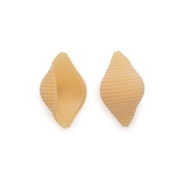 tofe trafilati al bronzo di gragnano igp 500 gr  p003 1 1