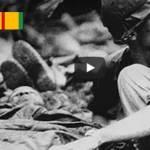 Bob Dylan: Blowin' in the Wind – Vietnam Vet Tribute