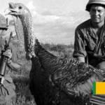Thanksgiving In Vietnam (1966/69) | Silent Footage
