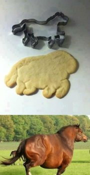 nailed it horse