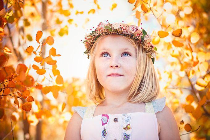Autumn Aspens by LelaKieler - Orange Tones Photo Contest