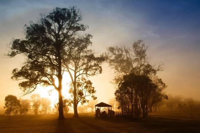 Misty Morning van DanaCarruthers - Fotowedstrijd met unieke locaties