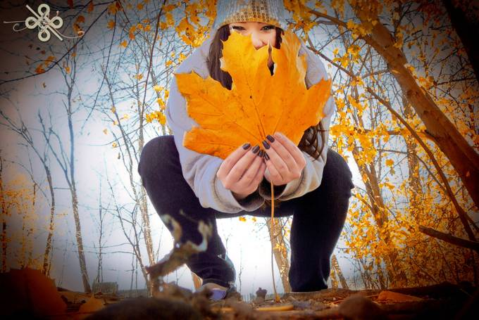 New England Leaf by keeley15lf - Orange Tones Photo Contest