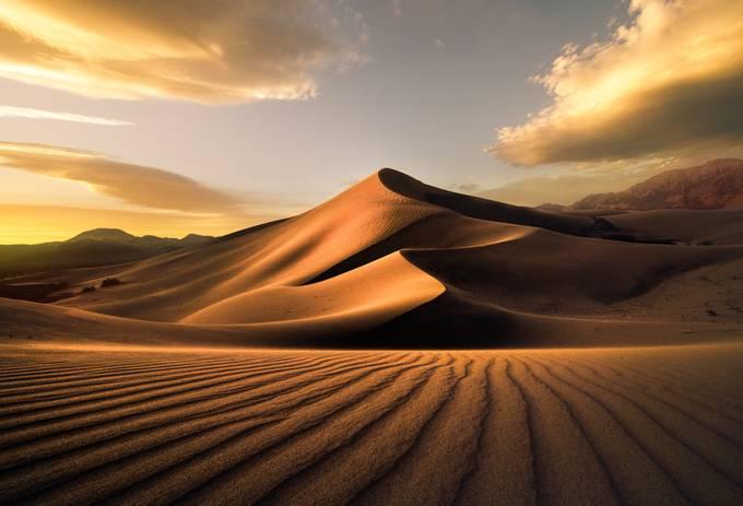 Ibex 5 by steveberkley - The Wonders of the World Photo Contest