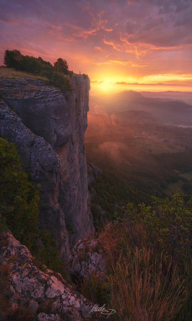 Close Encounters by NicolaPirondini - Celebrating Nature Photo Contest Vol 5