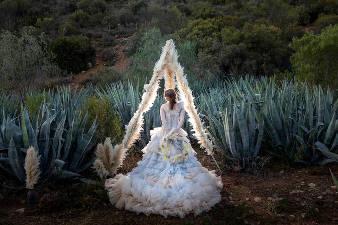Klein Karoo Garden Route Wedding by darrellfraser - All About The Wedding Photo Contest